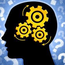 Curiosity brain